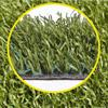 Виды искусственных газонов, какой выбрать?